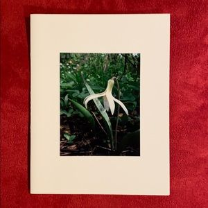 8 Hand-Made Floral Photo Blank Cards